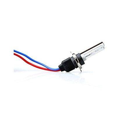Ksenoninė lemputė Basic H7 4300K