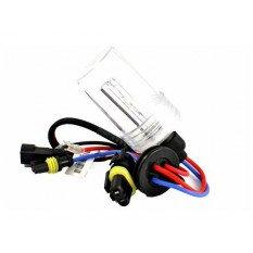 Ksenoninės lemputės Basic H7 4300K