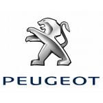 Peugeot | Pagal automobilį